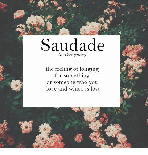Love, Lost, and Portuguese: Saudade  sl. Portuguese)  the feeling of longing  for something  or someone who you  love and which is lost