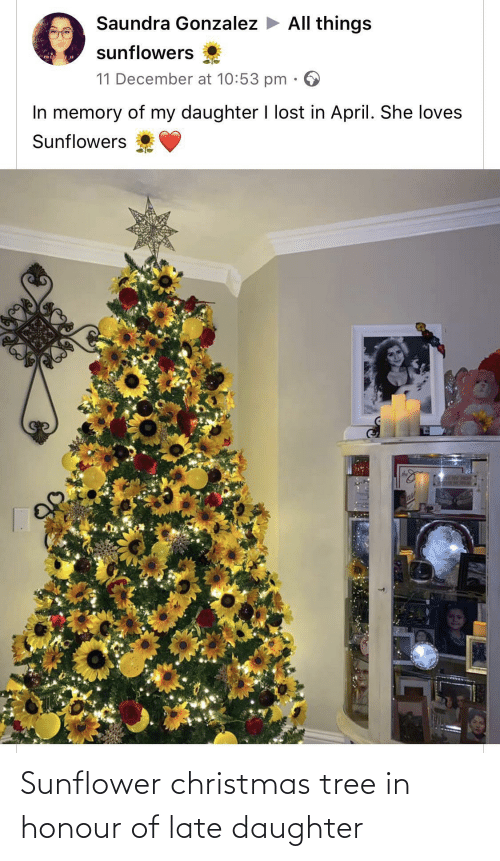 Christmas, Lost, and Christmas Tree: Saundra Gonzalez > All things  sunflowers  mis  11 December at 10:53 pm  In memory of my daughter I lost in April. She loves  Sunflowers  SLAY HOM  ase Sunflower christmas tree in honour of late daughter
