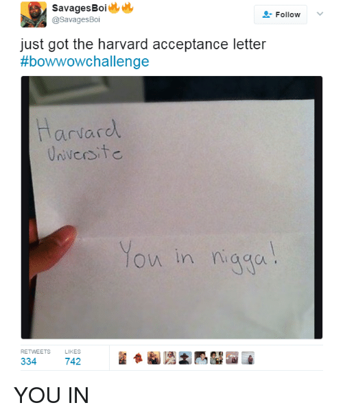 Savages Boi Follow Boi Just Got the Harvard Acceptance Letter Bow
