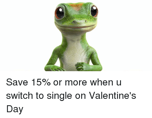 Funny and Single on Valentines Day: Save 15% or more when u switch to single on Valentine's Day