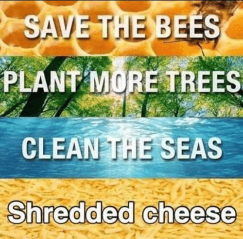 Trees, Bees, and Cheese: SAVE THE BEES  PLANT MORE TREES  CLEAN THE SEAS  Shredded cheese