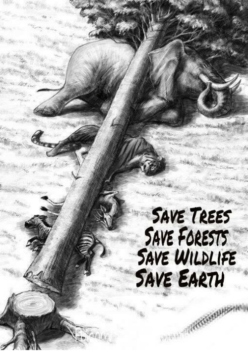 save trees save forest save wildlife save earth meme on me me