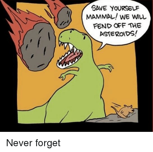 Never, Mammal, and Never Forget: SAVE YOURSELF  MAMMAL! WE WLL  FEND OFF THE  6ASTEROIDS! Never forget