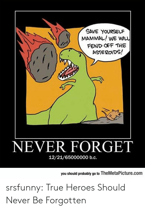 True, Tumblr, and Blog: SAVE YOURSELF  MAMMAL/WE wu  FEND OFF THE  ASTEROIDS!  NEVER FORGET  12/21/6500000° b.с.  you should probably go to TheMetaPicture.com srsfunny:  True Heroes Should Never Be Forgotten