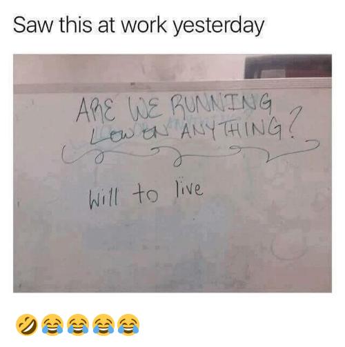 Saw, Work, and Girl Memes: Saw this at work yesterday  ARe WE RUTNG  hill to Jive 🤣😂😂😂😂