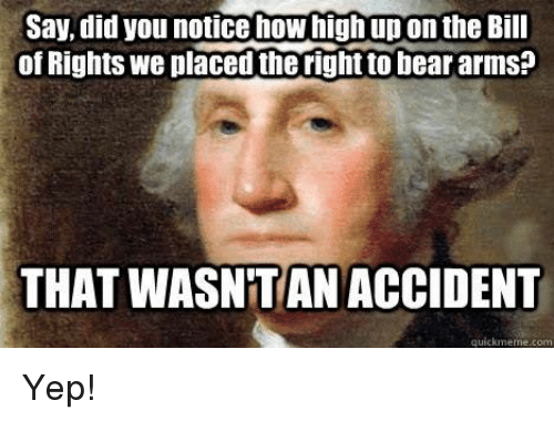 How High, Memes, and Bear: Say, did you notice how high up on the Bil  of Rights we placed theright to bear arms?  THAT  WASNTAN ACCIDENT  quickmeme.com Yep!