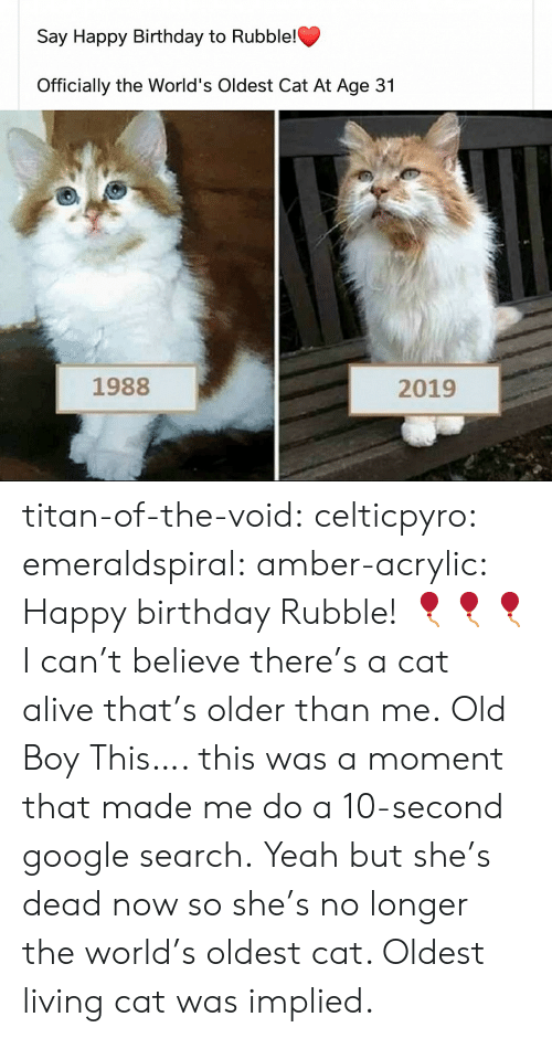 Alive, Birthday, and Google: Say Happy Birthday to Rubble!  Officially the World's Oldest Cat At Age 31  1988  2019 titan-of-the-void: celticpyro:   emeraldspiral:  amber-acrylic: Happy birthday Rubble! 🎈🎈🎈 I can't believe there's a cat alive that's older than me.  Old Boy   This…. this was a moment that made me do a 10-second google search. Yeah but she's dead now so she's no longer the world's oldest cat. Oldest living cat was implied.