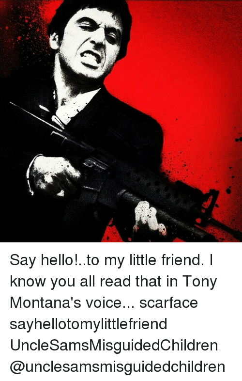 Say Helloto My Little Friend I Know You All Read That In Tony