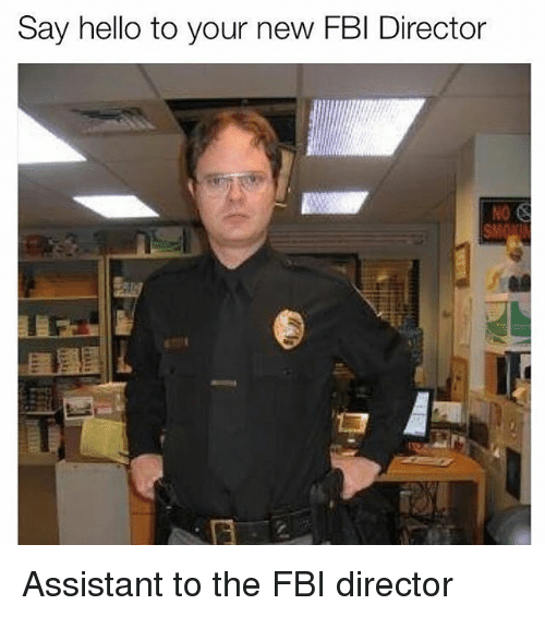 Fbi, Hello, and Memes: Say hello to your new FBI Director  NO Assistant to the FBI director