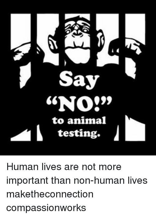 importance of animal testing 11062018 get an answer for 'why is animal testing importanti need this for my speech class' and find homework help for other biology questions at enotes.