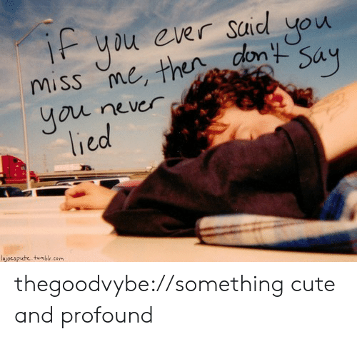 Cute, Tumblr, and Blog: Say  ou never  lied  lejoespute tumblr com thegoodvybe://something cute and profound