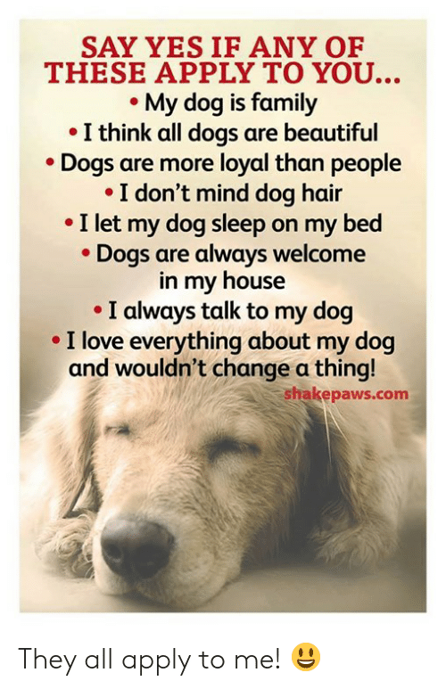 Beautiful, Dogs, and Family: SAY YES IF ANY OF  THESE APPLY TO YOU...  My dog is family  I think all dogs are beautiful  Dogs are more loyal than people  I don't mind dog hair  I let my dog sleep on my bed  Dogs are always welcome  in my house  I always talk to my dog  I love everything about my dog  and wouldn't change a thing!  shakepaws.com They all apply to me! 😃