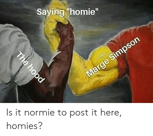 "Homie, Normie, and Post: Saying homie"" Is it normie to post it here, homies?"