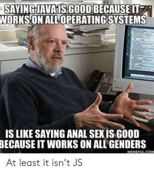 Anal Sex, Sex, and Anal: SAYINGJAVAISGOOD BECAUSEIT  WORKSON ALLOPERATING SYSTEMS  IS LIKE SAYING ANAL SEX IS GOOD  BECAUSE IT WORKS ON ALL GENDERS  MEMEFULCOM At least it isn't JS