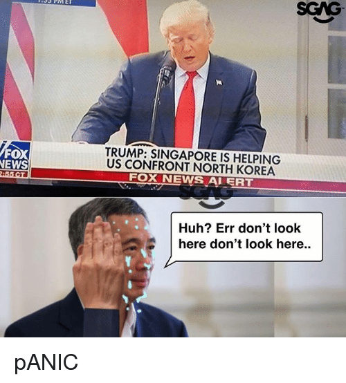 Huh, Memes, and News: SCAG  FO  NEWS  TRUMP: SINGAPORE IS HELPING  US CONFRONT NORTH KOREA  FOX NEWS ALERT  Huh? Err don't look  here don't look here.. pANIC