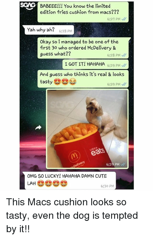 Cute, Memes, and Omg: SCAG  S  BABEEE!!! You know the limited  edition fries cushion from macs???  6:27 PM  Yah why ah?  6:28 PM  Okay so i managed to be one of the  first 30 who ordered McDelivery &  guess what??  6:28 PM、//  I GOT IT! HAHAHA629 P  And guess who thinks it's real & looks  tasty e  6:29 PM  UBER  6:29 PM  OMG SO LUCKY! HAHAHA DAMN CUTE  LAHe  6:30 PM This Macs cushion looks so tasty, even the dog is tempted by it!!