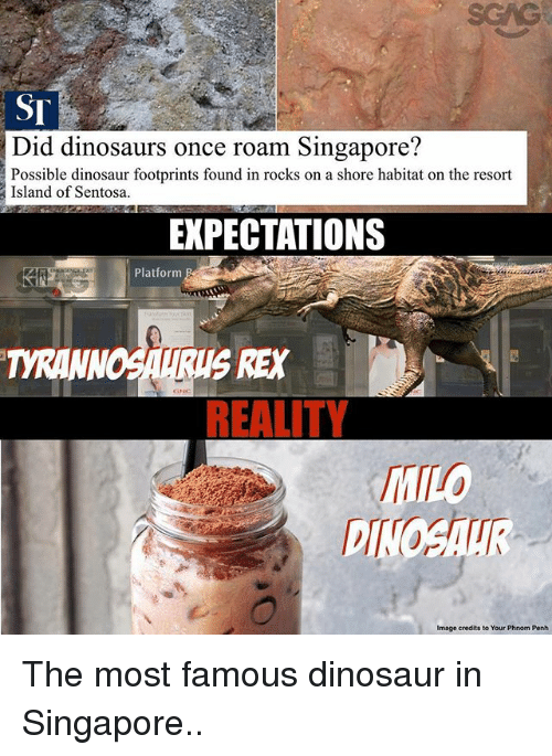Dinosaur, Memes, and Dinosaurs: scAG  ST  Did dinosaurs once roam Singapore?  Possible dinosaur footprints found in rocks on a shore habitat on the resort  Island of Sentosa.  EXPECTATIONS  Platform  TYRANN  DINOSAUR  Image credits to Your Phnom Penh The most famous dinosaur in Singapore..