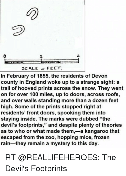 SCALE FEET in February of 1855 the Residents of Devon County in England  Woke Up to a Strange Sight a Trail of Hooved Prints Across the Snow They  Went on for ...