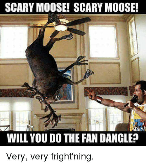 Funny, Moose, and Will: SCARY MOOSE! SCARY MOOSE!  WILL YOU DO THE FAN DANGLE Very, very fright'ning.