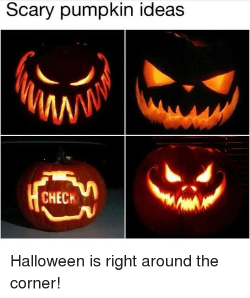 Memes And Pumpkin Scary Ideas Check Is Right Around The