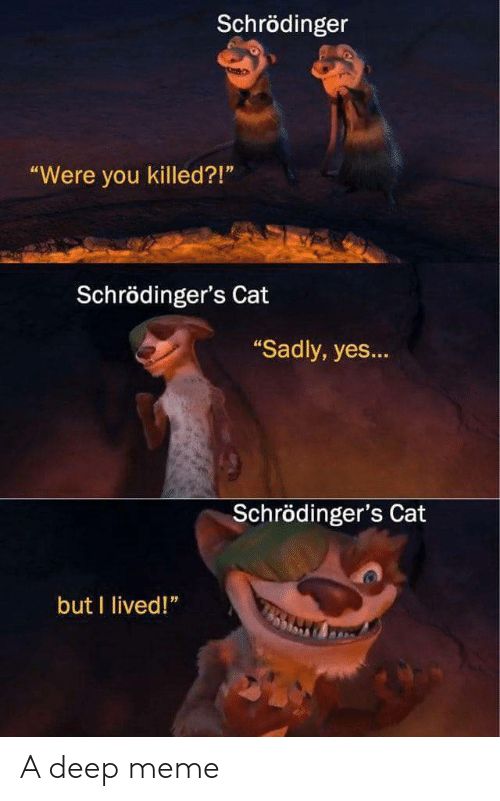"Meme, Cat, and Yes: Schrödinger  Were you killed?!""  Schrödinger's Cat  Sadly, yes...  Schrödinger's Cat  but I lived!"" A deep meme"