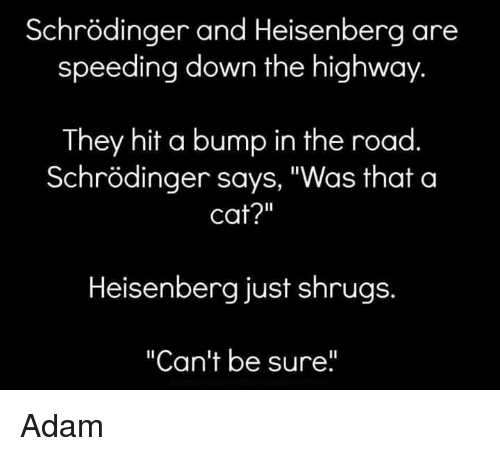 [Image: schrodinger-and-heisenberg-are-speeding-...783279.png]