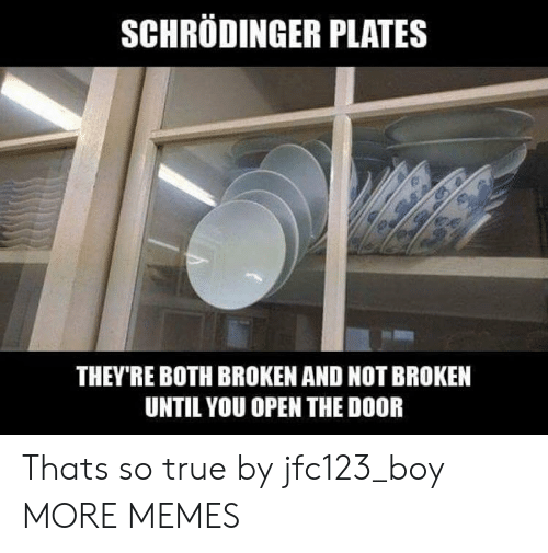 Dank, Memes, and Target: SCHRODINGER PLATES  THEY'RE BOTH BROKEN AND NOT BROKEN  UNTIL YOU OPEN THE DOOR Thats so true by jfc123_boy MORE MEMES