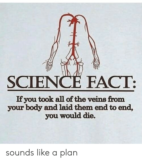 Science, All of The, and Them: SCIENCE FACT:  If you took all of the veins from  your body and laid them end to end,  you would die. sounds like a plan