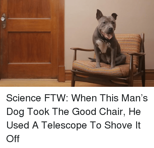 Science Ftw