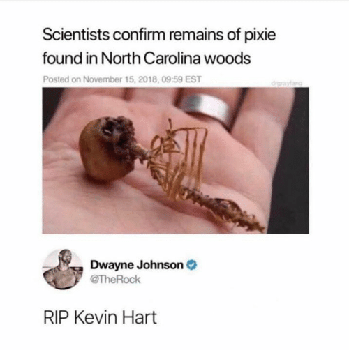 Dank, Dwayne Johnson, and Kevin Hart: Scientists confirm remains of pixie  found in North Carolina woods  Posted on November 15, 2018, 09:59 EST  drgraylang  Dwayne Johnson  TheRock  RIP Kevin Hart