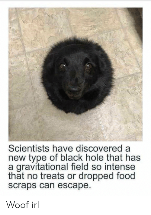 Food, Black, and Irl: Scientists have discovered a  new type of black hole that has  a gravitational field so intense  that no treats or dropped food  scraps can escape Woof irl