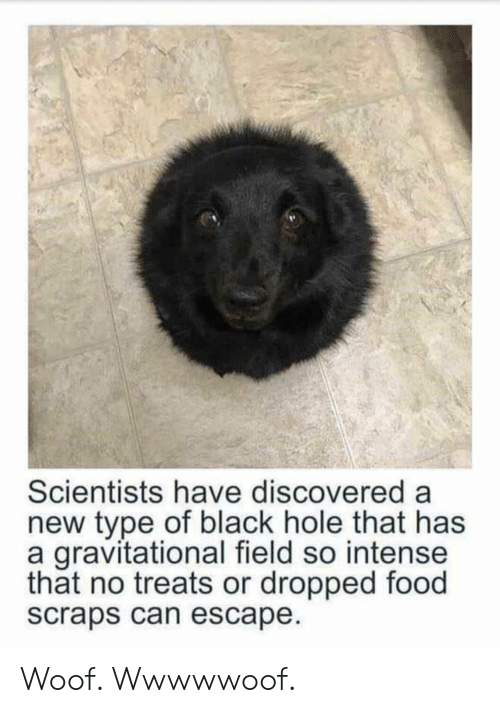 Food, Black, and Black Hole: Scientists have discovered a  new type of black hole that has  a gravitational field so intense  that no treats or dropped food  scraps can escape Woof. Wwwwwoof.