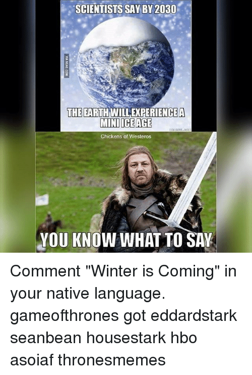 """Hbo, Memes, and Winter: SCIENTISTS SAY BY 2030  THE EARTH WILLEXPERIENCEA  MINI ICE AGE  Chickens of Westeros  YOU KNOW WHAT TO SAY Comment """"Winter is Coming"""" in your native language. gameofthrones got eddardstark seanbean housestark hbo asoiaf thronesmemes"""