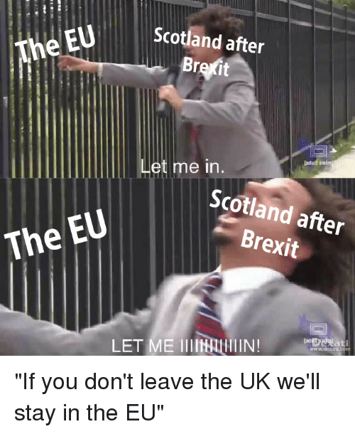 Adult Swim, Scotland, and Dank Memes: Scotland after  The EU  Br  it  adult swim  Let me in.  Scotland after  Brexit  The EU  www.dexa