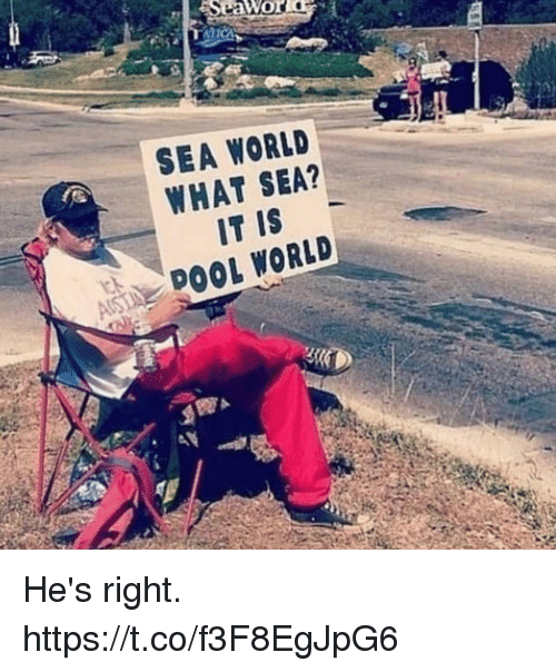 Funny, Pool, and Sea World: SEA WORLD  WHAT SEA?  IT IS  AS POOL WORLD He's right. https://t.co/f3F8EgJpG6