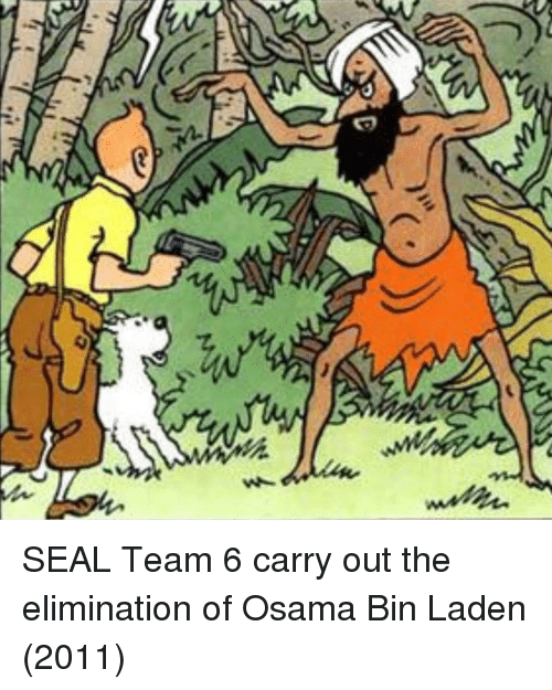 SEAL Team 6 Carry Out the Elimination of Osama Bin Laden 2011