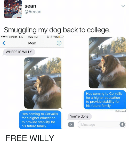 Memes, Verizon, and Free Willy: Sean  5eean  Smuggling my dog back to college  ...oo Verizon LTE  4:20 PM  19%  Mom  WHERE IS WILLY  Hes coming to Corvallis  for a higher education  to provide stability for  his future family  Delivered  Hes coming to Corvallis  You're done  for a higher education  to provide stability for  Message  his future family FREE WILLY