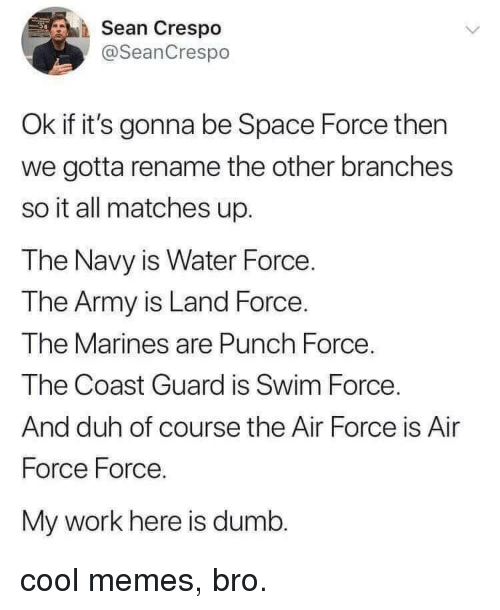 Dumb, Memes, and Work: Sean Crespo  @SeanCrespo  Ok if it's gonna be Space Force then  we gotta rename the other branches  so it all matches up.  The Navy is Water Force.  The Army is Land Force.  The Marines are Punch Force  The Coast Guard is Swim Force  And duh of course the Air Force is Air  Force Force.  My work here is dumb. cool memes, bro.