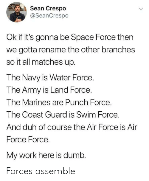 Dumb, Work, and Army: Sean Crespo  @SeanCrespo  Ok if it's gonna be Space Force then  we gotta rename the other branches  so it all matches up.  The Navy is Water Force  The Army is Land Force.  Ihe M  The Coast Guard is Swim Force  And duh of course the Air Force is Air  Force Force.  My work here is dumb.  arines are Punch Force Forces assemble