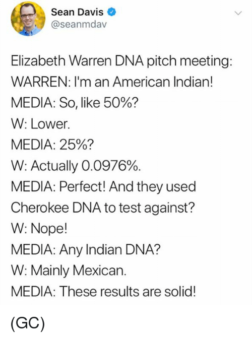 Elizabeth Warren, Memes, and American: Sean Davis  @seanmdav  Elizabeth Warren DNA pitch meeting:  WARREN: I'm an American Indian!  MEDIA: So, like 50%?  W: Lower.  MEDIA: 25%?  W: Actually 00376%.  MEDIA: Perfect! And they used  Cherokee DNA to test against?  W: Nope!  MEDIA: Any Indian DNA?  W: Mainly Mexican.  MEDIA: These results are solid! (GC)