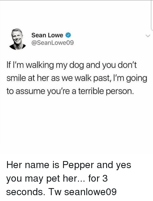 Memes, Smile, and 🤖: Sean Lowe  @SeanLowe09  If I'm walking my dog and you don't  smile at her as we walk past, I'm going  to assume you're a terrible person. Her name is Pepper and yes you may pet her... for 3 seconds. Tw seanlowe09