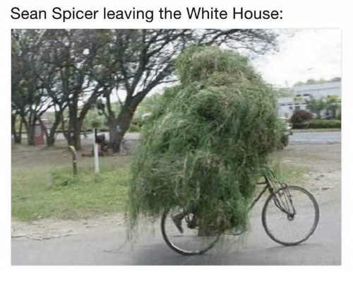 Memes, White House, and House: Sean Spicer leaving the White House: