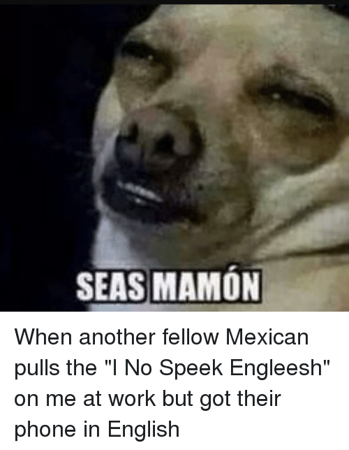 SEAS MAMON When Another Fellow Mexican Pulls the I No Speek