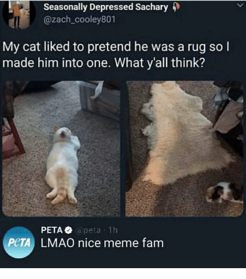 Fam, Lmao, and Meme: Seasonally Depressed Sachary 4)  @zach_cooley801  My cat liked to pretend he was a rug so l  made him into one. What y'all think?  @peta 1h  PeTA LMAO nice meme fam