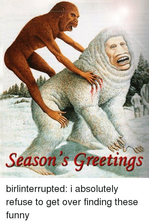 Funny, Tumblr, and Blog: Season's Greetings birlinterrupted: i absolutely refuse to get over finding these funny