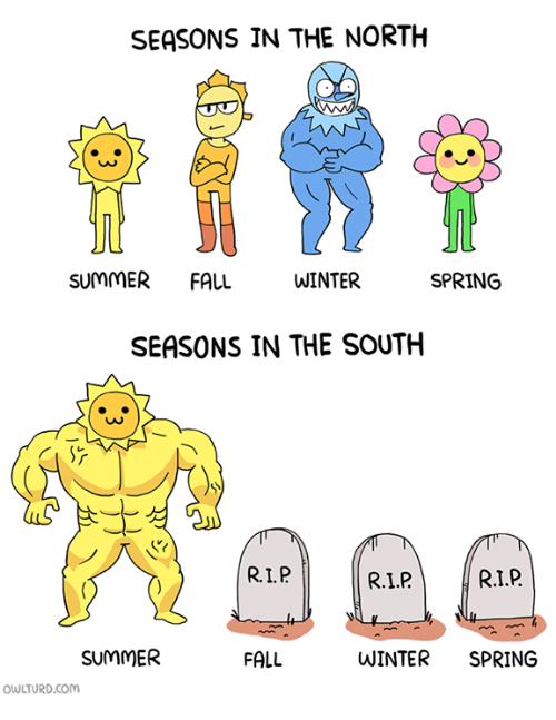 SEASONS IN THE NORTH SUMMER FALL WINTER SPRING SEASONS IN ...