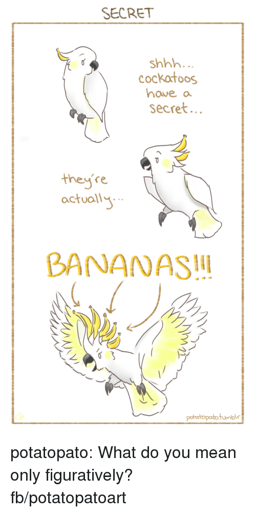 Facebook, Target, and Tumblr: SECRET  shhh  cockatoos  haveo  secret  they're  actuall  BANANAS potatopato:  What do you mean only figuratively?fb/potatopatoart