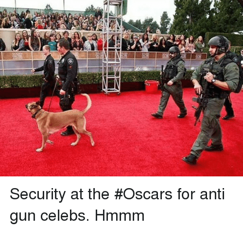 Memes, Oscars, and Anti: Security at the #Oscars for anti gun celebs.  Hmmm