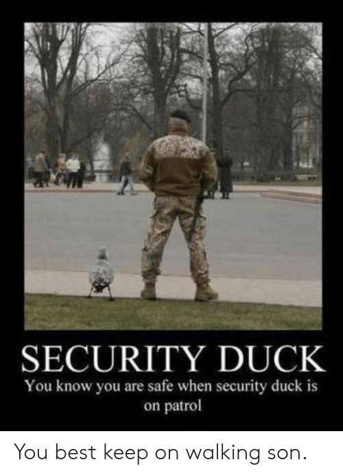 Best, Duck, and Safe: SECURITY DUCK  You know you are safe when security duck is  on patrol You best keep on walking son.