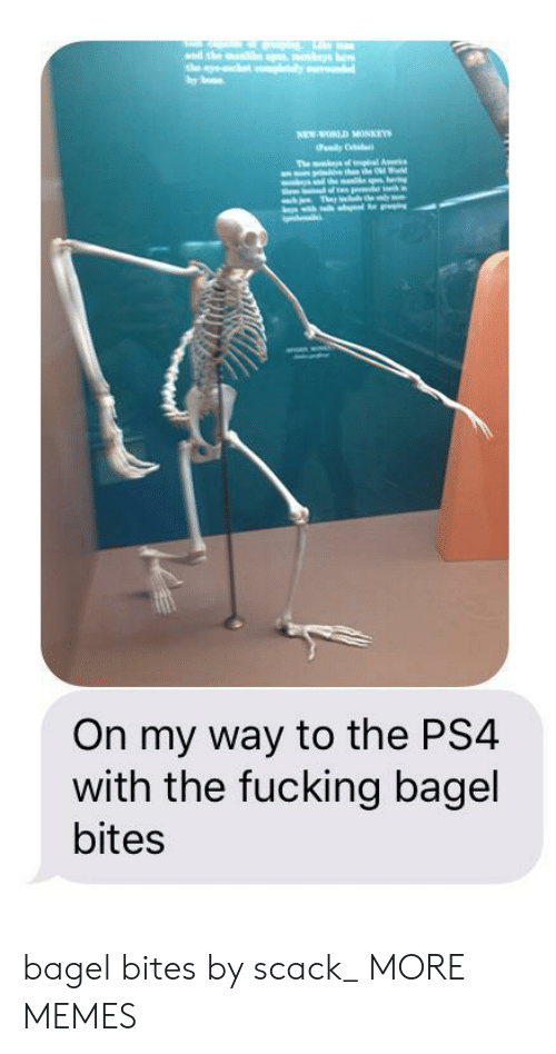 Dank, Fucking, and Memes: sed the ma  the y  one  NEW WORLD MONKEYS  dily  The mt f l A  hnhe Od Wd  h Thr heby  On my way to the PS4  with the fucking bagel  bites bagel bites by scack_ MORE MEMES